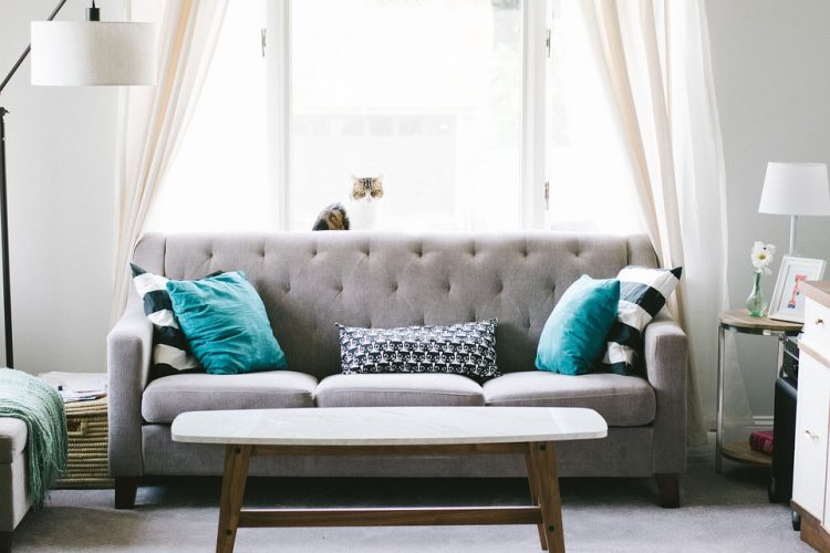 Shop For 5' Sofa's Online Today